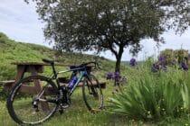 Sortie Cyclosportive